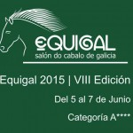 equigal-15