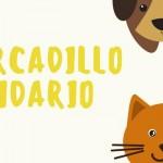mercadillo-solidario-2016