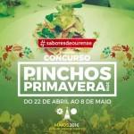 pinchos-de-primavera-16