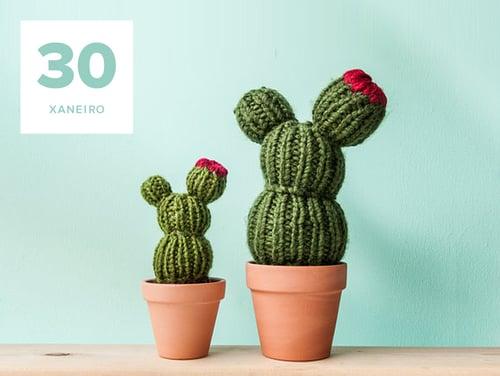 Cactus de amigurumi obradoiro en santiago de compostela for Cactus santiago