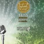 Festival-de-la-Luz-2015-en-Boimorto