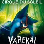 Circo-du-soleil